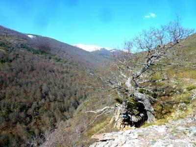 Alto Campoo;Parque Natural Saja-Besaya;pirineos orientales clubs en madrid valderejo parque natural